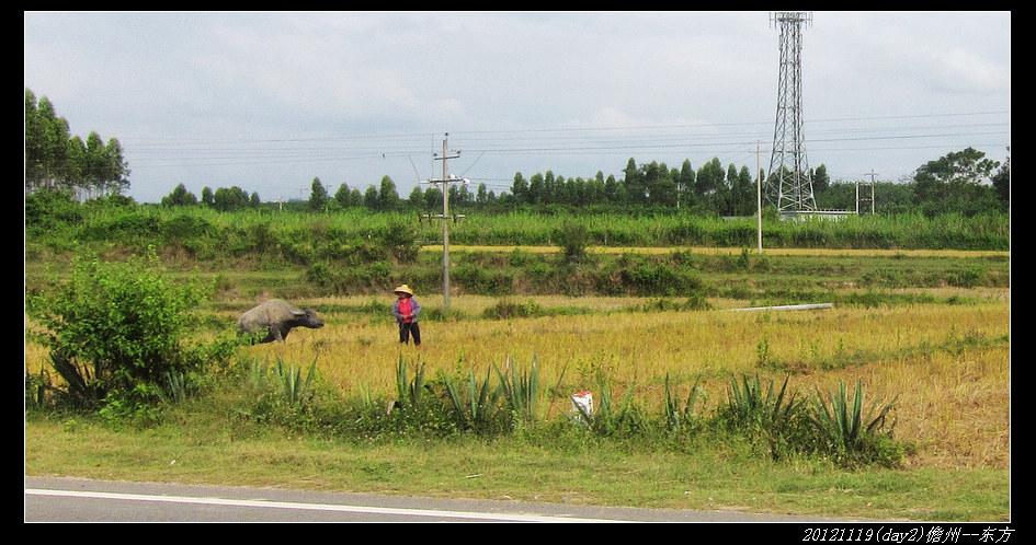 20121119环骑海南day2(儋州 东方)32 - 20121119环骑海南day2(儋州--东方)