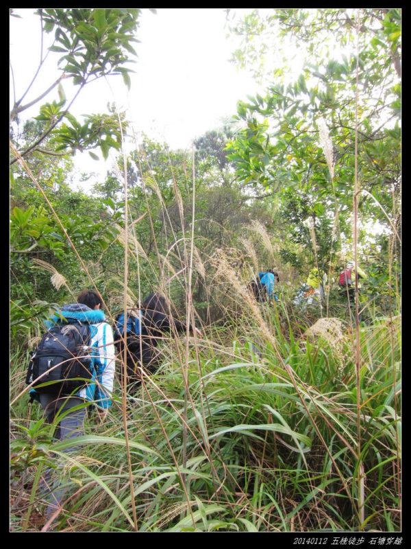 20140112五桂徒步 石塘穿越06 600x800 - 20140112五桂徒步 石塘穿越