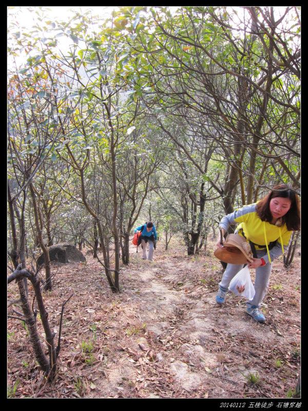 20140112五桂徒步 石塘穿越32 600x800 - 20140112五桂徒步 石塘穿越