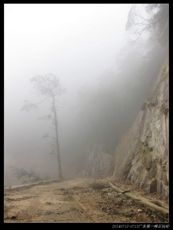 20140713奔袭广东第一峰 石坑崆(day2)16 600x800 - 20140713奔袭广东第一峰 石坑崆(day2)