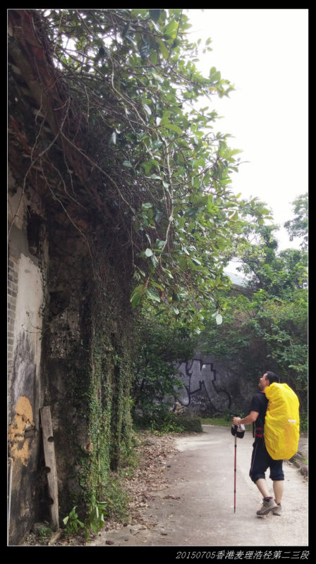 20150705重装香港麦理浩径50 448x800 - 20150705重装香港麦理浩径(2/3) 第二段:西湾--北潭凹