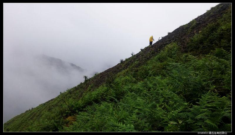 20160610云雨起微山05 - 20160610云雨起微山,牛粪荆棘路(2/2)