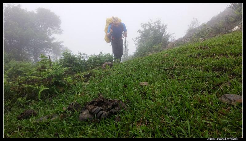 20160610云雨起微山10 - 20160610云雨起微山,牛粪荆棘路(2/2)