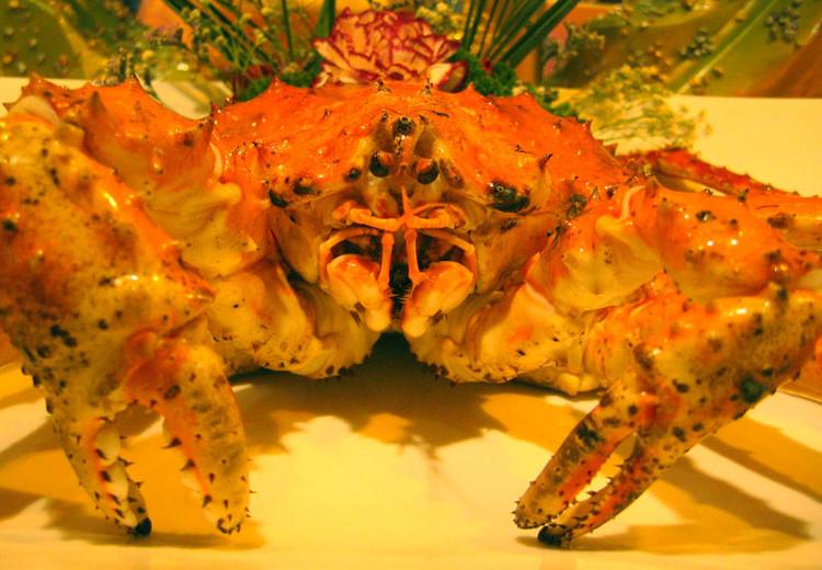 20091113广州美食节10 - 20091113广州美食节