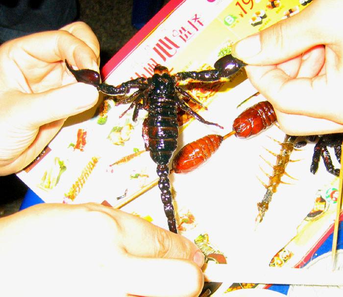 20091125小榄美食节15 - 20091125小榄美食节
