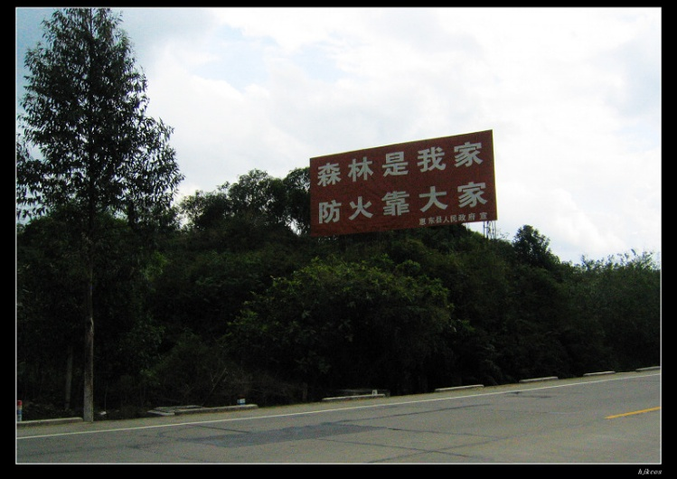 20100210春之旅 第四天 惠州到海丰19 - 20100210春之旅 第四天 惠州到海丰
