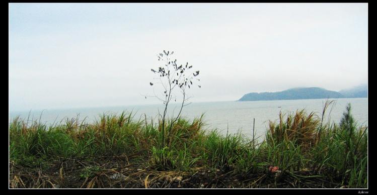 20100210春之旅 第四天 惠州到海丰28 - 20100210春之旅 第四天 惠州到海丰