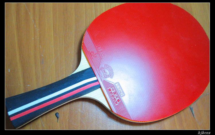 20100409乒乓球拍1 - 20100409乒乓球拍