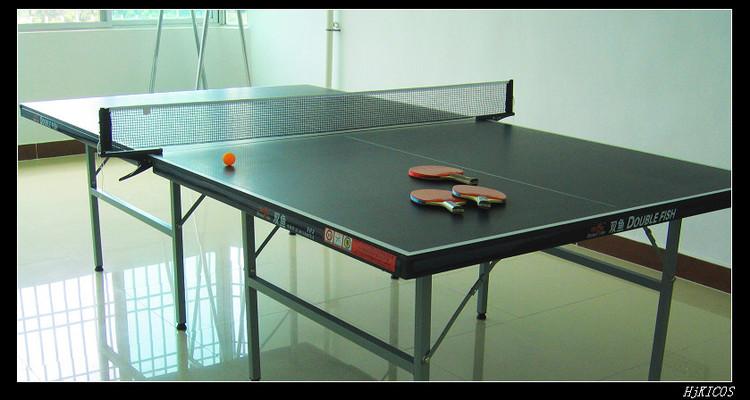 20100502俺家的乒乓球桌1 - 20100502俺家的乒乓球桌