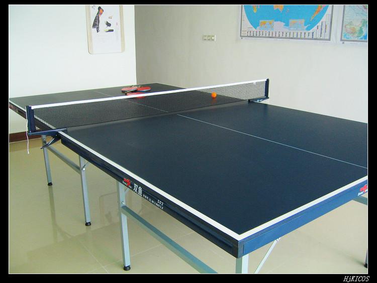 20100502俺家的乒乓球桌4 - 20100502俺家的乒乓球桌