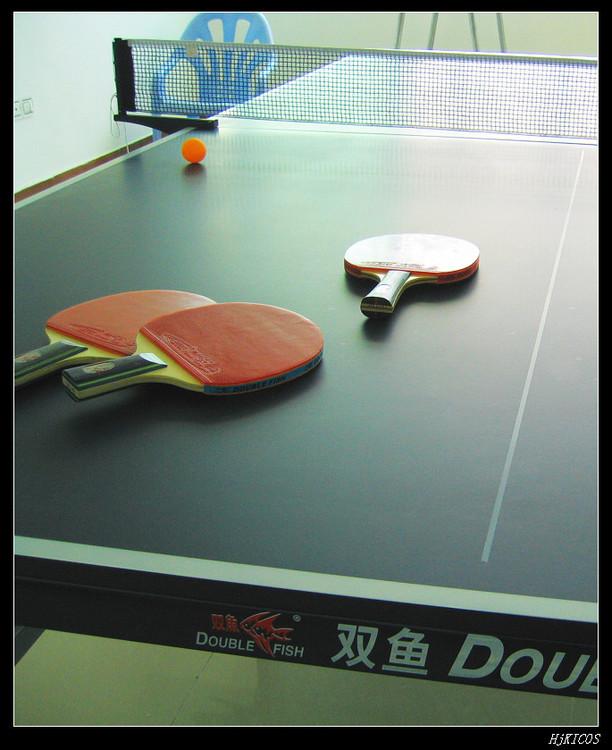 20100502俺家的乒乓球桌5 - 20100502俺家的乒乓球桌