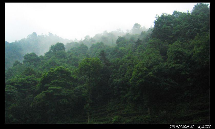 20100528沪杭慢游(day7)缥缈灵隐烟雨湖12 - 20100528沪杭慢游(day7)缥缈灵隐烟雨湖