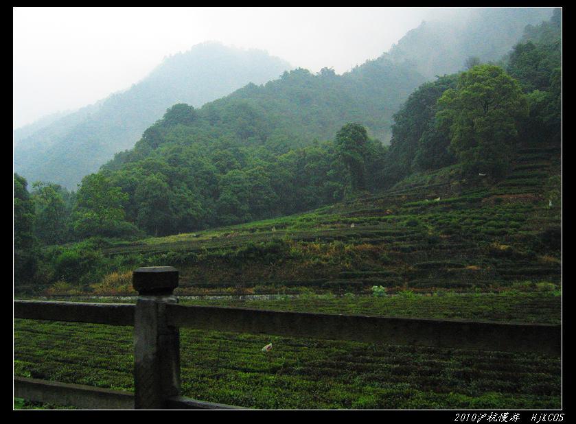 20100528沪杭慢游(day7)缥缈灵隐烟雨湖14 - 20100528沪杭慢游(day7)缥缈灵隐烟雨湖