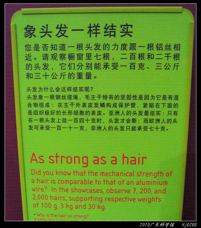 20100710广东科学馆42 - 20100710广东科学馆