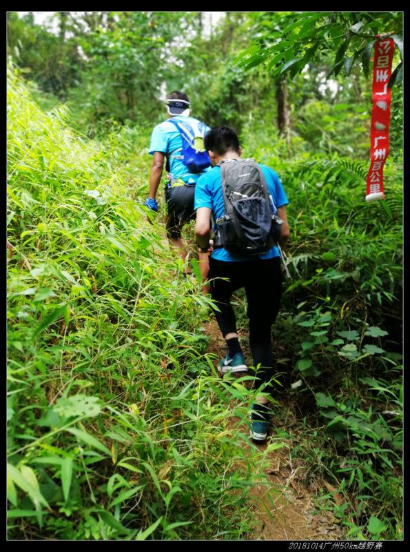 20181014广州50km越野赛19 595x800 - 20181014广州牛头山、帽峰山50km越野赛