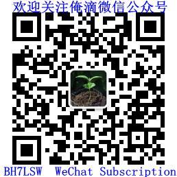 BH7LSW微信公众号二维码 1 - 2018小结