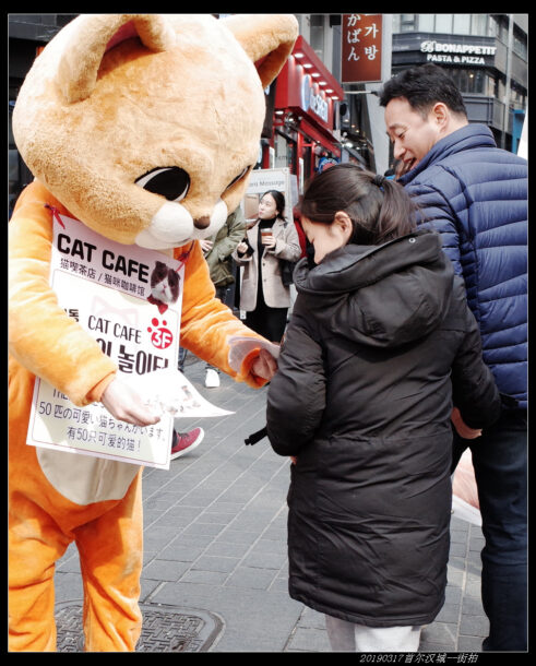20190317首尔汉城 街拍08 491x610 - 20190317第90届汉城马拉松